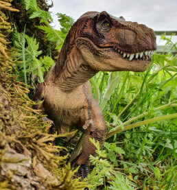 Tyrannosaurus rex figur i gress